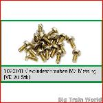 Train Line45  1020011 - Brass screws brass, M2 (20 Pcs.)